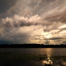 after the storm by james smith