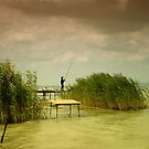 The fisherman by borjoz