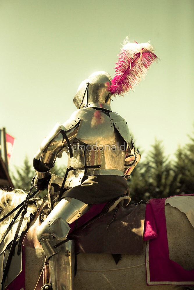 My knight in shining armour by cmcdonald