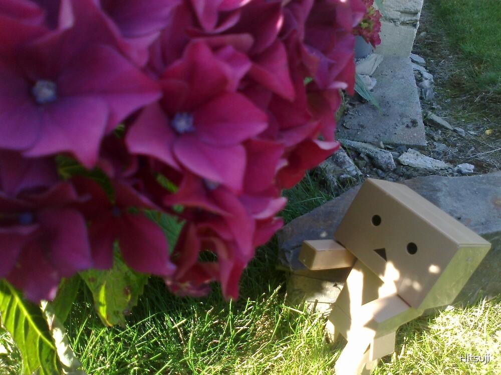 Danbo & flowers by Hitsuji