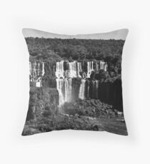 Iguazu Throw Pillow