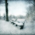 Take a Seat by AnnieSnel