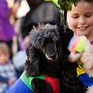 Young Girl With Circus Poodles by reflector