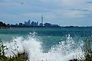 Beautful but Windy Day in Toronto by Elaine  Manley