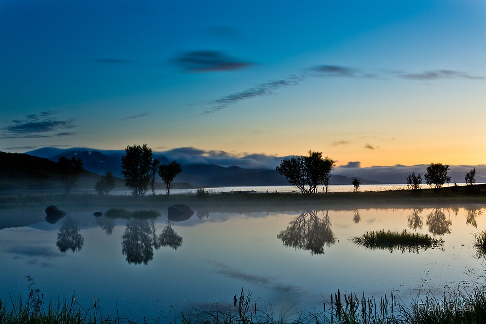 Fog over the pond II by Frank Olsen
