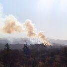 Algo se está quemando by DCFotos