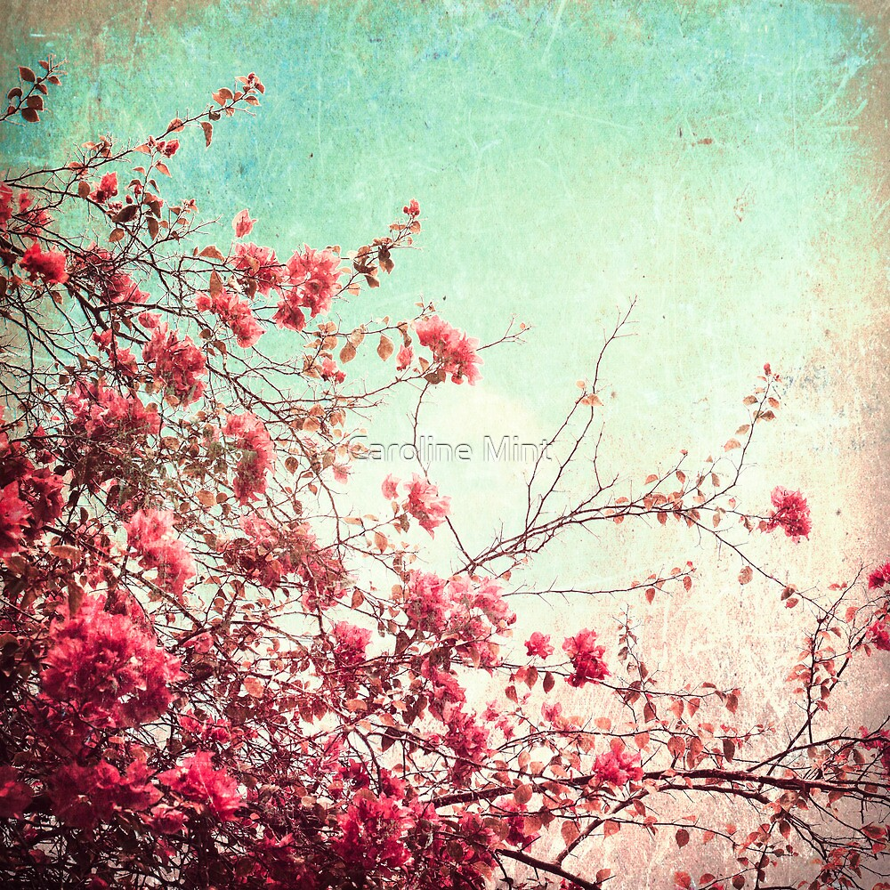 Pink Flowers on a Textured Blue Sky (Vintage Flower Photography) by Caroline Mint