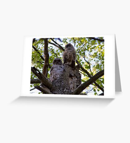 I've Got My Eye on You Greeting Card