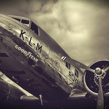 royal plane by coltrane004