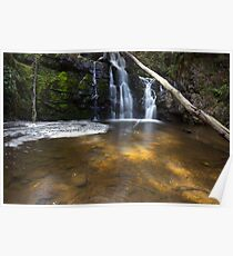 Upper Lilydale Falls Poster