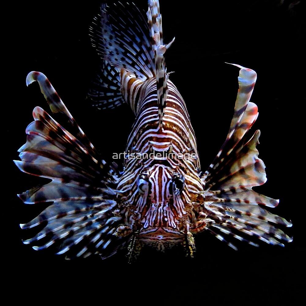 Underwater Art ~ Part Three by artisandelimage