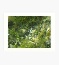 Underwater Vegetation 520 Art Print
