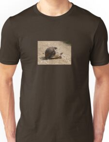 Gagging for It - Mating Turkish Tortoises  T-Shirt