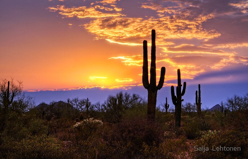 Quot Southwest Desert Sunset Quot By Saija Lehtonen Redbubble