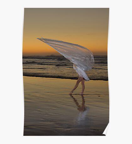 Among my swan Poster