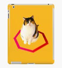 cat trap iPad Case/Skin