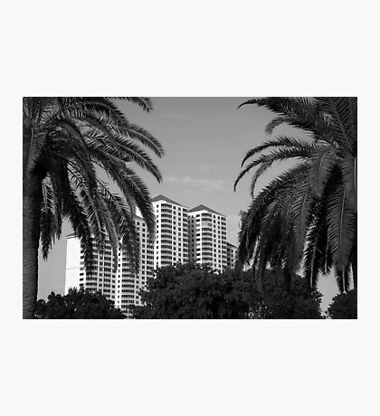 The Towers  Photographic Print