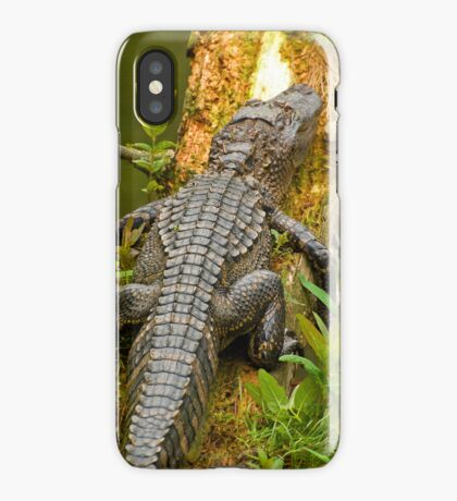 Gator iphone iPhone Case