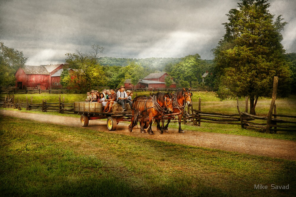 Country - Horse - Life's Pleasures by Michael Savad