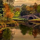 The Canal by Irene  Burdell