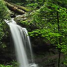 Grotto Waterfall by dc witmer