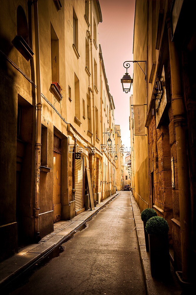 Alleyways of Paris, France by Elana Bailey