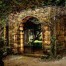 Enticement #2 ~ Yengo Historic Gardens, Mt Wilson by Rosalie Dale