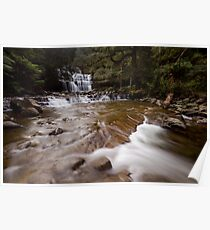 Liffey Falls ~ Late Afternoon Poster