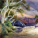 Ormiston Gorge by Joe Cartwright