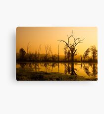 Brazos Bend Dawn Canvas Print