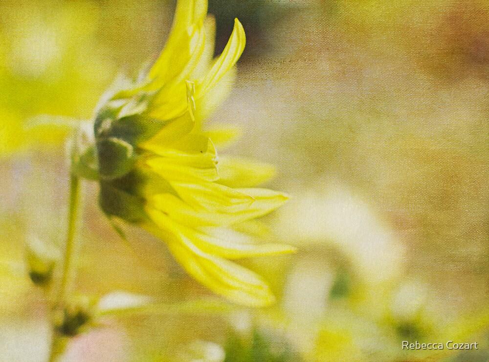 Summer Sun by Rebecca Cozart