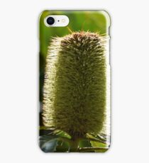 Banksia nectar iPhone Case/Skin