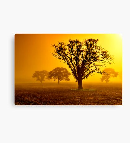 """In The Mists Of Dawn"" Canvas Print"