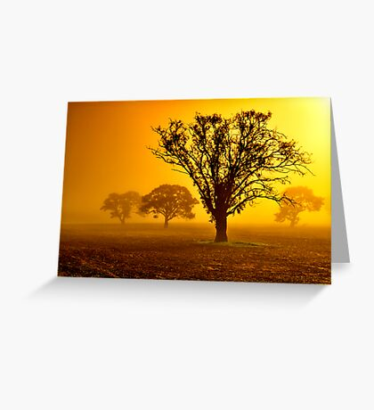"""""""In The Mists Of Dawn"""" Greeting Card"""