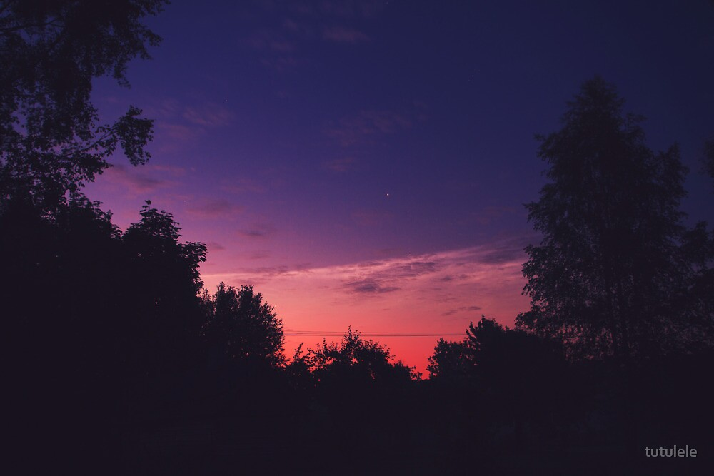 Morning Glory by tutulele