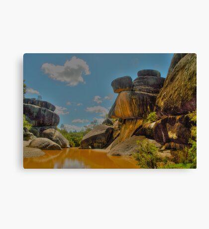 Mickey Mouse Rocks Canvas Print