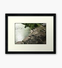 Solitude by the Lake Framed Print