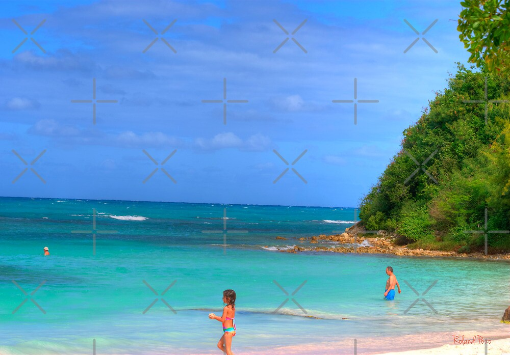 Beach in Antigua by photorolandi