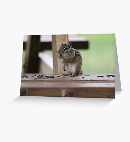Pip Greeting Card