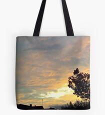 July 2012 Sunset 19 Tote Bag