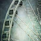 The Big Wheel by Nikki Smith (Brown)