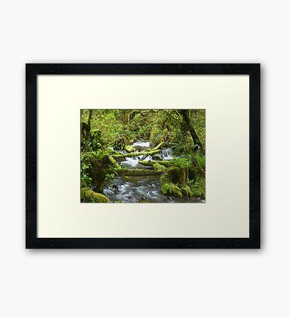 Tiny Falls Framed Print