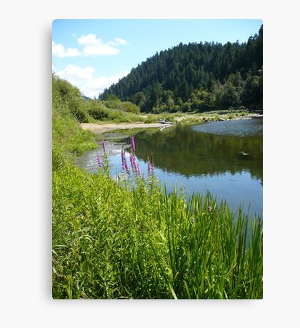 Perfect Day At The River Canvas Print