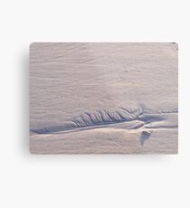 Sand Feather ~ North Hampton Beach, NH Metal Print