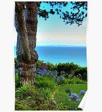 Blue Waters In Palos Verdes California Poster