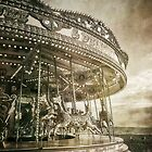 The Carousel by Nikki Brown