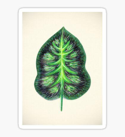 Tropical Leaf II Sticker