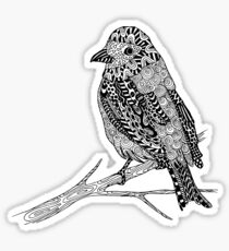 Bird Illustration Sticker
