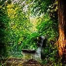 The Bench by Debra Fedchin