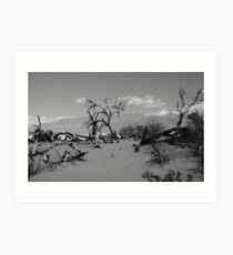 DeathValley Art Print